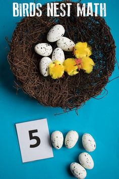 Spring Themed Maths - Birds Nest Counting, Addition and Subtraction Subtraction Activities, Nursery Activities, Math Activities For Kids, Easter Activities, Spring Activities, Science For Kids, Numeracy, Are You My Mother, Kindergarten
