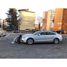 #audi #a5 #gray #car #cars #carporn #me #mybaby