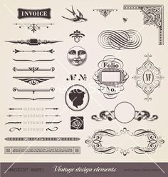 Vintage design elements vector - by AnjaKaiser on VectorStock®