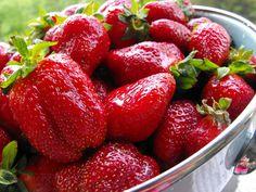Strawberry Meditation | Juicy Love | Fruit of Arkansas