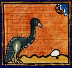 An ostrich leaves its egg to be hatched by the warmth of the sun.Bibliothèque Nationale de France, fr. 14970, Folio 21v