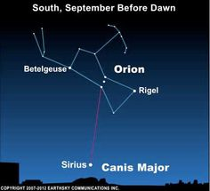 Orion's Belt always points to Sirius, the sky's brightest star.