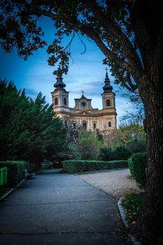 Roman Catholic Basilica from Oradea, Romania Location Scout, Classic Films, Roman Catholic, Photo Tips, Landscape Architecture, Hungary, Mansions, House Styles, City