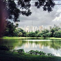 Parque da Aclimação.