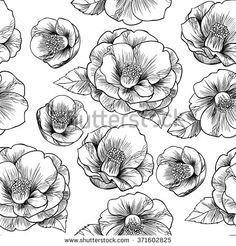 Black and white camellia.Vector seamless pattern