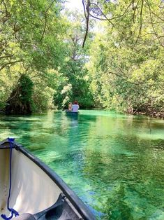 Weeki Wachee-What is most beautiful about this natural kayak park is the fact that the water is practically see through. Florida Springs, Panama City Beach Florida, Destin Florida, Florida Vacation, Florida Travel, Vacation Places, Panama City Panama, Dream Vacations, Vacation Spots