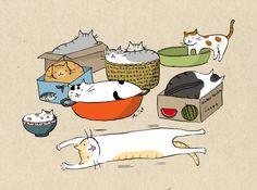 Мисс время кошка ноты - ДСУ Блоги