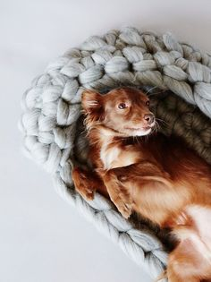 Chunky Knit Wool Dog Bed