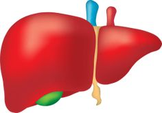 What is Fatty Liver?? What are it's Home Treatments??
