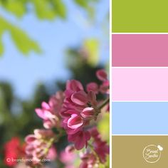 Summer Pastel colour palette by Brand Smoothie