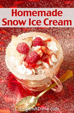 Homemade Snow Ice Cream Recipe - Just 2 Ingredients...if you don't count the snow. :-)