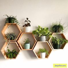 "Set of 6 Medium 2 ""Deep Hexagon Shelves, . - Set of 6 Medium 2 ""Deep Hexagon Shelves, Honeycomb Shelves, Floating Shelves, Geometric Shelves – - Geometric Shelves, Honeycomb Shelves, Hexagon Shelves, Decorative Wall Shelves, Geometric Decor, Decorative Objects, Diy Wand, Honeycomb Shape, Honeycomb Pattern"