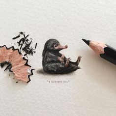 "Thank you so much for all your great suggestion today, I have a LONG to do list now! Day : NIFFLER - ""Fantastic Beasts and Where to Find Them,"" - J. 25 x 20 mm. PLEASE NOTE: This painting will be put up for. Fanart Harry Potter, Harry Potter Tattoos, Mundo Harry Potter, Harry Potter Drawings, Harry Potter World, Film Manga, Desenhos Harry Potter, Fantastic Beasts And Where, Illustration"