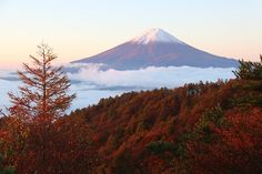 #Fuji #jesień #mountains #autumn