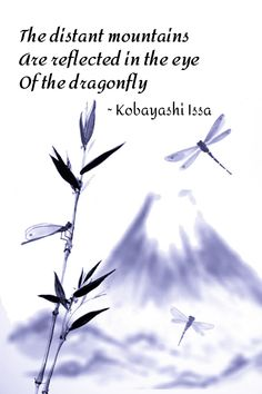 One of many poems about dragonflies written by the Japanese haiku master, Kobayashi Issa. Japanese Poem, Japanese Haiku, Very Short Poems, Dragonfly Quotes, Buddhist Wisdom, Poetry Foundation, Philosophical Quotes, Buddha Zen, Writing Poetry