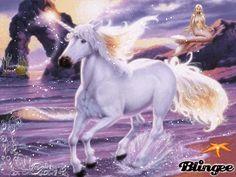 L'unicorno marino