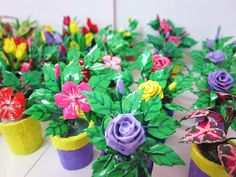 a small garden full of mini flowers from plastic bottle