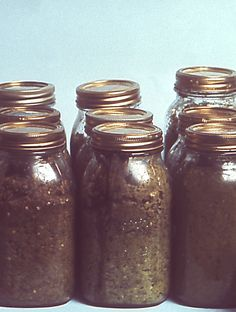 Avoid unsafe canning practices! (picture of unsafe canned peppers from the Centers for Disease Control & Prevention)