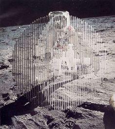 Shaun Kardinal's Altered States - Beautiful/Decay