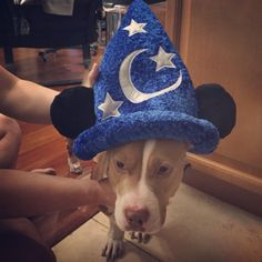 """""""Most magical place in the world my ass."""" 