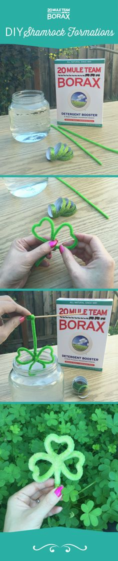 FAMILY CRAFT: If you're looking for a fun way to spend St. Patrick's Day, look no further than here! For a fun craft, use 20 Mule Team Borax to make an awesome crystal shamrock formation: all you need are pipe cleaners, Borax and water!