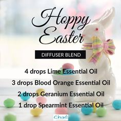 Hoppy Easter! 4 drops Lime Essential Oil 3 drops Blood Orange Essential Oil 2 drops Geranium Essential Oil 1 drop Spearmint Essential Oil Spearmint Essential Oil, Lime Essential Oil, Geranium Essential Oil, Organic Essential Oils, Hoppy Easter, Diffuser Blends, Blood Orange, Geraniums, Essentials