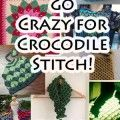 Free Crocodile Stitch Crochet Patterns with Tutorials! #crochet...I love this site.