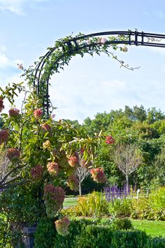 Rose arbor, european garden designed by Conte & Conte, LLC