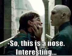 17 Harry Potter Memes That Are Hilarious and Funny! harry potter memes- voldemort and harry nose The post 17 Harry Potter Memes That Are Hilarious and Funny! appeared first on Paris Disneyland Pictures. Harry Potter Humor, Harry Potter Cast, Harry Potter World, Harry Potter Voldemort, Harry Potter Things, Harry Potter Deleted Scenes, Anecdotes Sur Harry Potter, Memes Spongebob, Fred