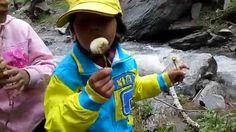 Children playing in sharan forest with Dandelion flower near water stream. Dandelion Flower, Kids Playing, Children, Travel, Young Children, Boys, Viajes, Kids, Child