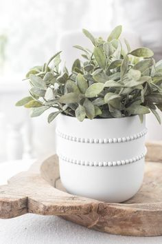 Simple DIY beaded pot Easy DIY beaded pot for real or artificial plants and flowers! This DIY home d Diy Décoration, Easy Diy, Simple Diy, Painted Plant Pots, Painting Terracotta Pots, Plant Crafts, Diy Planters, Diy Potted Plants, White Planters