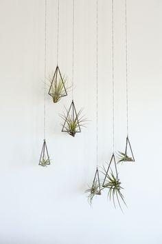 Creative Q&A: Kelly DeWitt | Tara Hurst Design