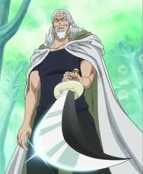 "Silvers Rayleigh (シルバーズ・レイリー Shirubāzu Reirī?) is the former first mate of the Roger Pirates, known as the ""Right Hand of the Pirate King"". He became a coating mechanic in Sabaody Archipelago at some point after Roger died and the crew was disbanded. He served as Luffy's mentor in the use of Haki during the two year timeskip."