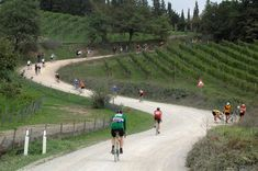 The good folks at Brooks England shares these beautiful images from the annual L'Eroica vintage bicycle sportive through Tuscany. Brooks England, Vintage Bicycles, Event Photos, Beautiful Images, Tuscany, Dolores Park, Cycling, Travel, Pictures