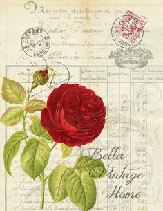 Original artwork created from vintage bookplates, etchings & papers. Printed in the USA on handcrafted paper