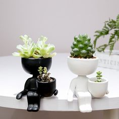 Create an indoor garden of your favorite succulents, with a collection of darling shelf people planters. Find more unique planters for succulents at Apollo Box! Ceramic Plant Pots, Ceramic Flower Pots, Ceramic Vase, Flower Vases, Flower Arrangement, Succulent Pots, Planting Succulents, Planting Flowers, Small Succulents