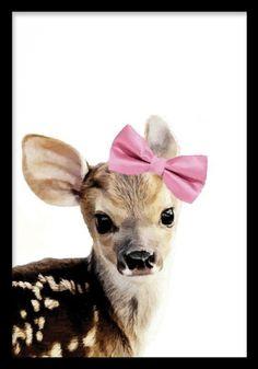 Bambi, prints. Poster med rådjur. Söt tavla till barnrummet. Ett litet rådjur med rosa rosett. Fin att sätta i svart eller vit ram och matcha med fler av våra barntavlor med djur motiv. Passar fint till inredning i rosa.