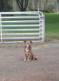 My best friend of 14 years. <3 u Skye