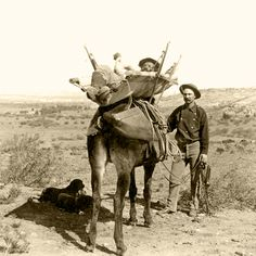 While wheeled vehicles had their place, the rough terrain found in Arizona and in many other areas of the West required ingenuity to transport the wounded. Mule back was just one means to solve this challenge.  – Courtesy Library of Congress –