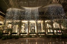"""Bruce Munro longwood 
