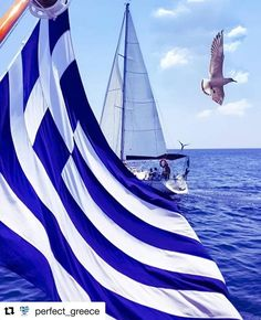 Today is the day for Greeks to remember and celebrate! Mykonos, Santorini, Greek Flag, Greek Beauty, Greek History, Greek Culture, Thessaloniki, Imagines, Ancient Greece