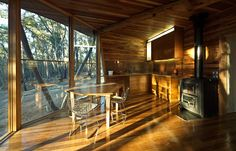 Forest cabin made only from the trees it displaced architect, paul morgan, contemporary homes, cozy kitchen, tree houses, trunks, trunk hous, cabin interiors, business design