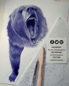 Half a bear. [S11X21:58] #Drawing #Ink #Bear #Grizzly #rafaelxaugusto