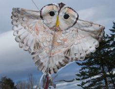 Tawny Owl kite: Great PDF with template and instructions