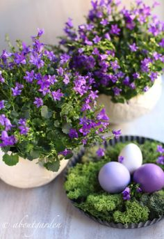 Purple & White Spring/Easter