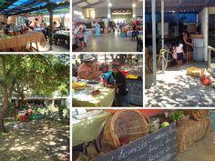 Markets in Cape Town - Jolly Carp Market - Photos by Rachel Robinson