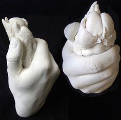 Paw in Hand Casting