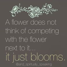 a flower does not think of competing with the flower next to it...it just blooms.