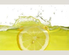 Hot summer cool green lemon slices wallpapers HD Wallpapers Rocks