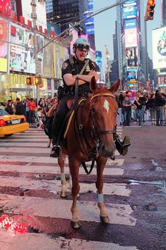 Horse and a Cop Police Uniforms, Police Officer, Animals And Pets, Funny Animals, Police Crime, Blue Line Police, New York Police, Nyc Art, Purple Nails